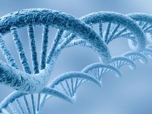 Технология, упорядочивающая ДНК