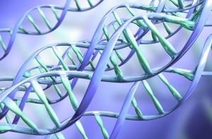 Исследования в области ДНК