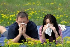 Необычные методы лечения аллергии