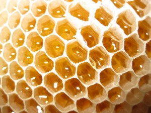 Вкусные подарки с медом - красиво упакованное натуральное лакомство